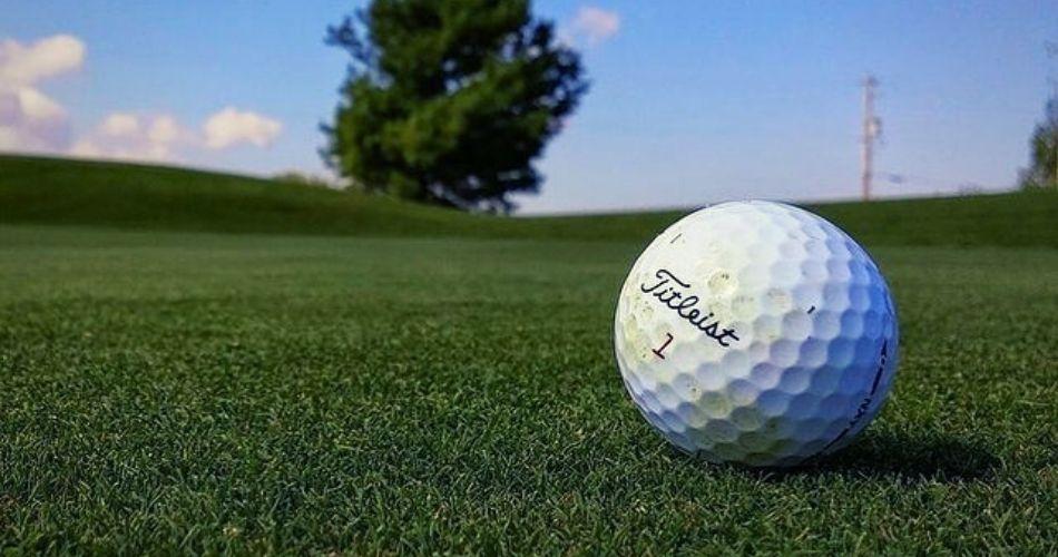 DNS Mean In Golf